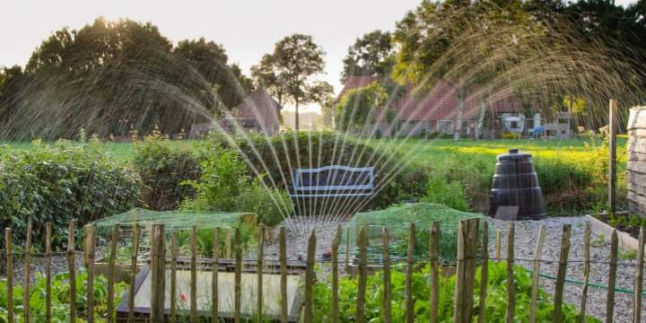 Garden irrigation services are the backbone of a healthy landscape
